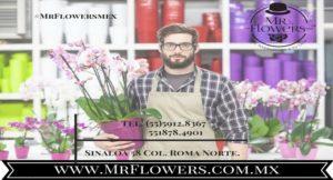Florerías en San Jerónimo Lídice atención