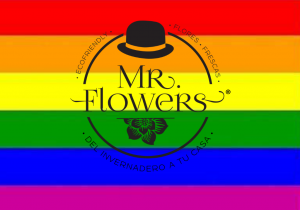 Bandera Gay Mr Flowers